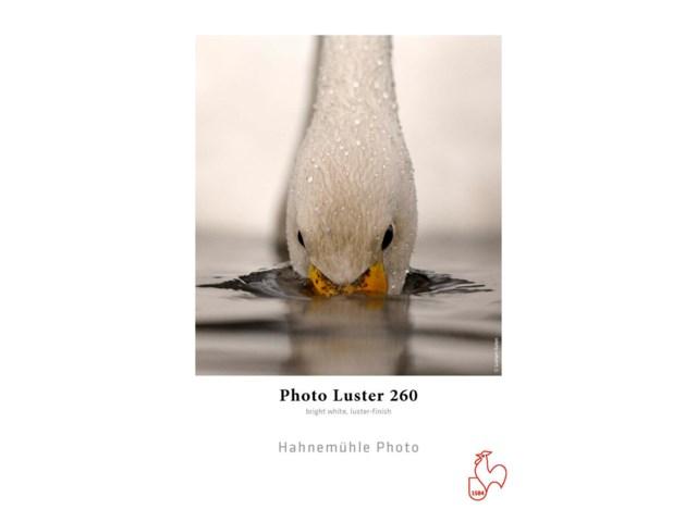 "Hahnemühle Photo Luster rulla 24"" x 30m 260gr"